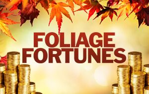 Foliage Fortunes